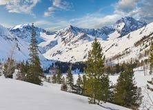 Bello paesaggio di inverno, montagne di Altai, Siberia, Russia Immagine Stock Libera da Diritti