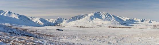 Bello paesaggio di inverno, montagne Russia di Altai Fotografia Stock Libera da Diritti