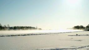 Bello paesaggio di inverno nel giorno soleggiato stock footage