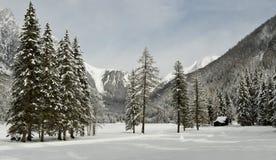 Bello paesaggio di inverno nel lago Antholz, alpi italiane, Tirolo del sud Fotografie Stock