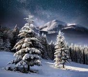 Bello paesaggio di inverno nelle montagne carpatiche Cielo notturno vibrante con le stelle e nebulosa e galassia Cielo profondo fotografia stock