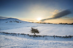 Bello paesaggio di inverno sopra la campagna innevata di inverno Immagine Stock