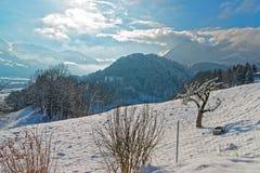 Bello paesaggio di inverno vicino alla città di Gruyeres Immagine Stock Libera da Diritti