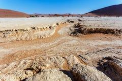 Bello paesaggio di Sossusvlei di Death Valley Immagini Stock Libere da Diritti