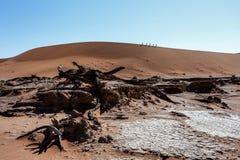 Bello paesaggio di Sossusvlei di Death Valley, Namibia Fotografie Stock Libere da Diritti