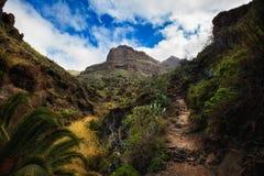 Bello paesaggio di Tenerife - valle di Masca Fotografia Stock Libera da Diritti