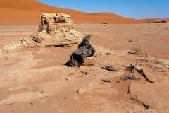 Bello paesaggio di Vlei nascosto nel deserto di Namib Fotografia Stock