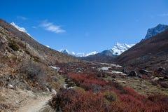 Bello paesaggio himalayano con catena montuosa Immagine Stock