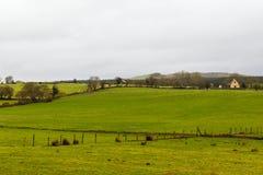 Bello paesaggio irlandese Fotografie Stock