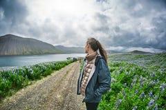 Bello paesaggio islandese con il campo nella priorità alta e nelle montagne ed i fiordi nei precedenti Immagine Stock Libera da Diritti