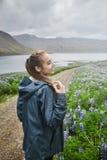 Bello paesaggio islandese con il campo nella priorità alta e nelle montagne ed i fiordi nei precedenti Fotografia Stock Libera da Diritti