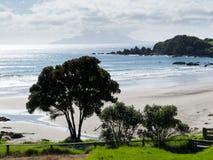 Bello paesaggio litoraneo, Tawharanui, NZ fotografia stock libera da diritti
