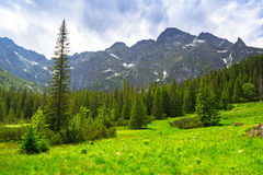 Bello paesaggio in montagne di Tatra, Polonia Immagine Stock
