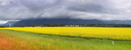 Bello paesaggio nel Montana Fotografie Stock Libere da Diritti