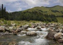 Bello paesaggio nelle montagne Fotografia Stock