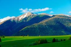Bello paesaggio, prato verde con la montagna della neve nel fondo La Slovacchia, Europa centrale, Liptov Montagna alta Immagini Stock