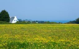 Bello paesaggio rurale Fotografia Stock Libera da Diritti