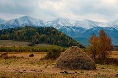 Bello paesaggio rurale contro lo sfondo delle montagne Immagini Stock