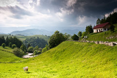 Bello paesaggio rurale dalla Romania Fotografie Stock Libere da Diritti