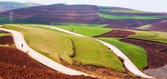 Bello paesaggio rurale in sud della Cina, terra rossa di Dongchuan Uomini cinesi locali che guidano motociclo sulla strada asfalt fotografia stock