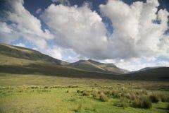 Bello paesaggio scozzese degli altopiani Fotografie Stock Libere da Diritti