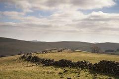 Bello paesaggio soleggiato del distretto di punta nel Regno Unito con lo sto famoso Immagini Stock
