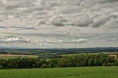 Bello paesaggio stupefacente variopinto di paradiso del prato della montagna Fotografie Stock