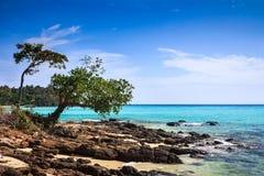 Bello paesaggio tropicale di Phi Phi Don Island Fotografia Stock Libera da Diritti