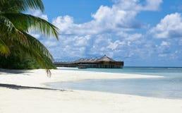Bello paesaggio tropicale in Maldive Immagine Stock