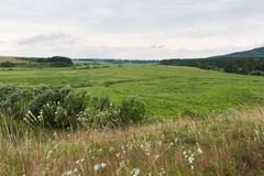 Bello paesaggio in Ucraina Immagine Stock Libera da Diritti