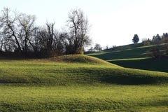 Bello paesaggio verde della montagna in Baviera Germania Immagini Stock