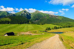 Bello paesaggio verde di estate delle montagne di Tatra nel villaggio di Zdiar, Slovacchia Immagini Stock