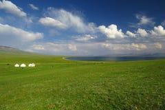 Bello paesaggio verde in Kyrgystan, lago Kol di canzone fotografie stock libere da diritti