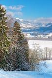 Bello paesaggio vicino al castello di Gruyeres su un winte soleggiato Fotografia Stock Libera da Diritti