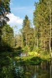 Bello paesaggio vicino alla baia di Wimsener in camice sveve Fotografia Stock