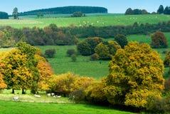 Bello paese di autunno Fotografia Stock