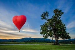 Bello pallone rosso sotto forma di un cuore Fotografia Stock
