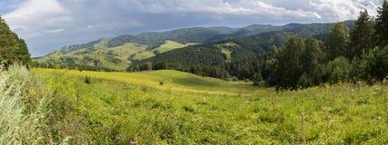 Bello panorama del paesaggio di estate in montagne di Altai Fotografia Stock