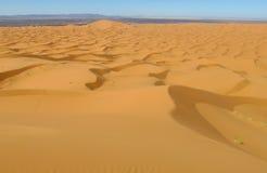 Bello panorama delle dune del deserto della sabbia in deserto del Sahara Fotografia Stock
