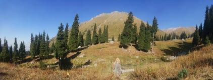 Bello panorama delle montagne Fotografia Stock Libera da Diritti