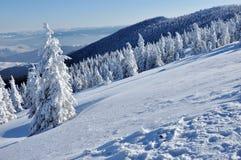 Bello panorama delle montagne di inverno fotografie stock