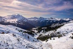 Bello panorama di inverno con la neve fresca della polvere Paesaggio con Immagine Stock Libera da Diritti