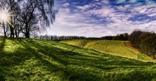 Bello panorama di Rolling Hills, di erba verde e di cielo blu Fotografie Stock
