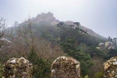 Bello panorama medievale del castello con il merlo in nebbia Fotografie Stock Libere da Diritti