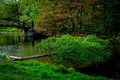 Bello parco a Amsterdam Fotografia Stock Libera da Diritti