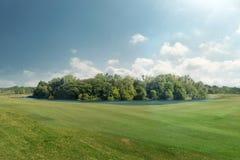 Bello parco naturale con il paesaggio del giardino dell'erba verde Immagine Stock