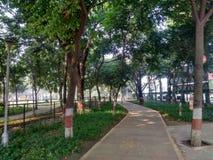 Bello parco pubblico con erba verde illustrazione vettoriale