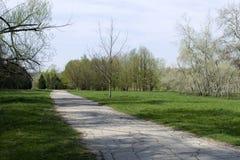 Bello parco verde con una lunga strada Bello parco verde con i banchi di legno bianchi Bello parco verde con una lunga strada Immagini Stock Libere da Diritti