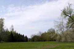 Bello parco verde con una lunga strada Bello parco verde con i banchi di legno bianchi Bello parco verde con una lunga strada Fotografia Stock