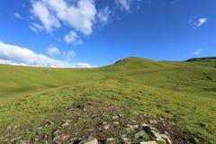 Bello pascolo dell'alta montagna in Cina Immagine Stock Libera da Diritti